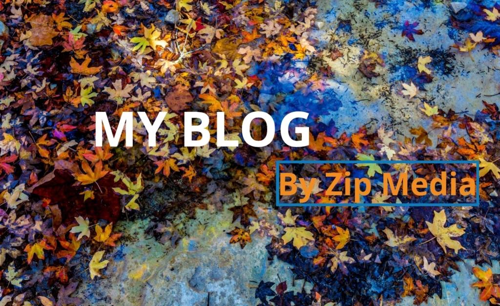 Zip Media Blog